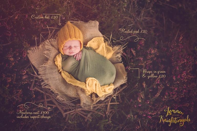 the-cost-of-creating--custom-portraits-lorna-knightingale