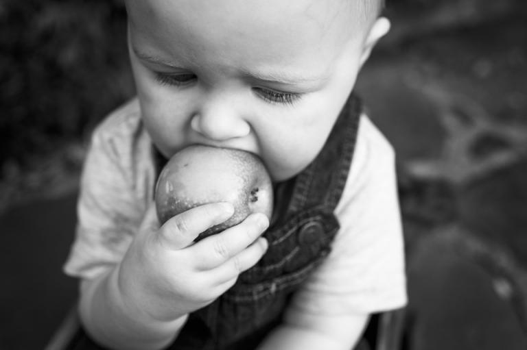 one-year-old-noah-photography-lorna-knightingale-inglewood-manor